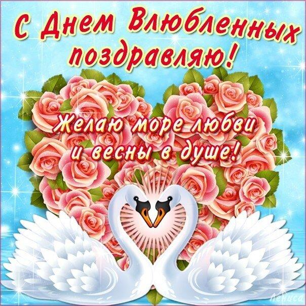 Картинки поздравления к 14 февраля, кот мышью открытка